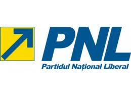 istoria PNL