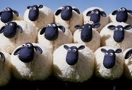 sa revenim la oile noastre expresia