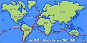 beagle darwin